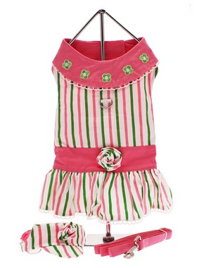 Chloe's Beverly Hills Chihuahua Dress Set
