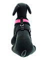 Urban Pup Pink Soft Harness